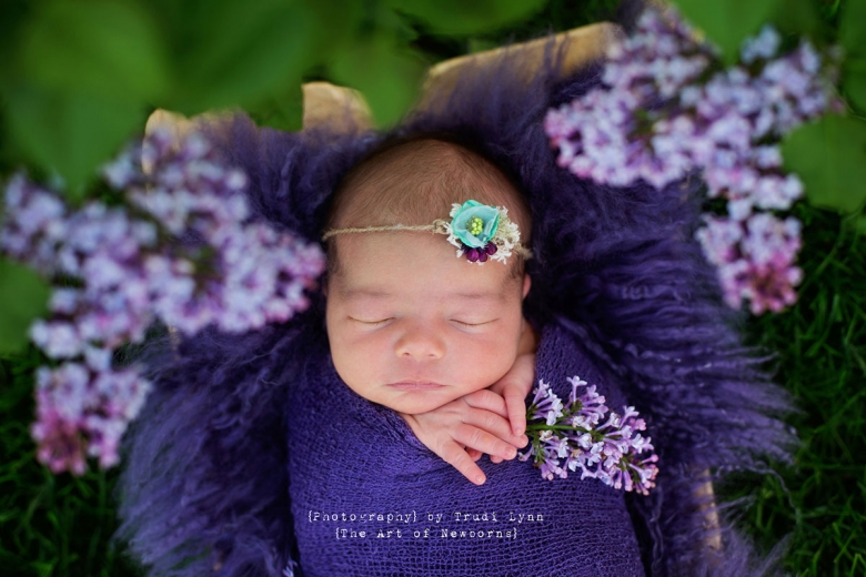 newborn baby girl outdoors in garden surrounded by purple lilacs